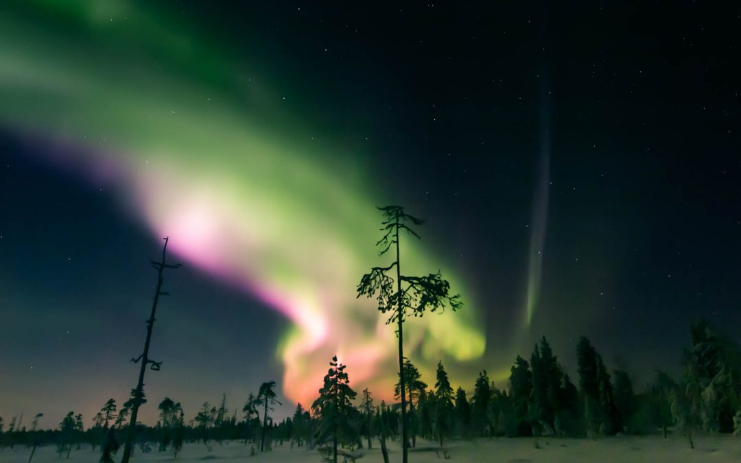 The 7 Best Things to Do in Lapland in Winter